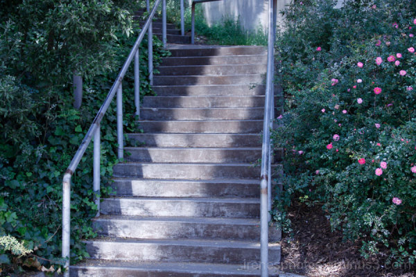 Stairs Near Student Union Building 2 of 2