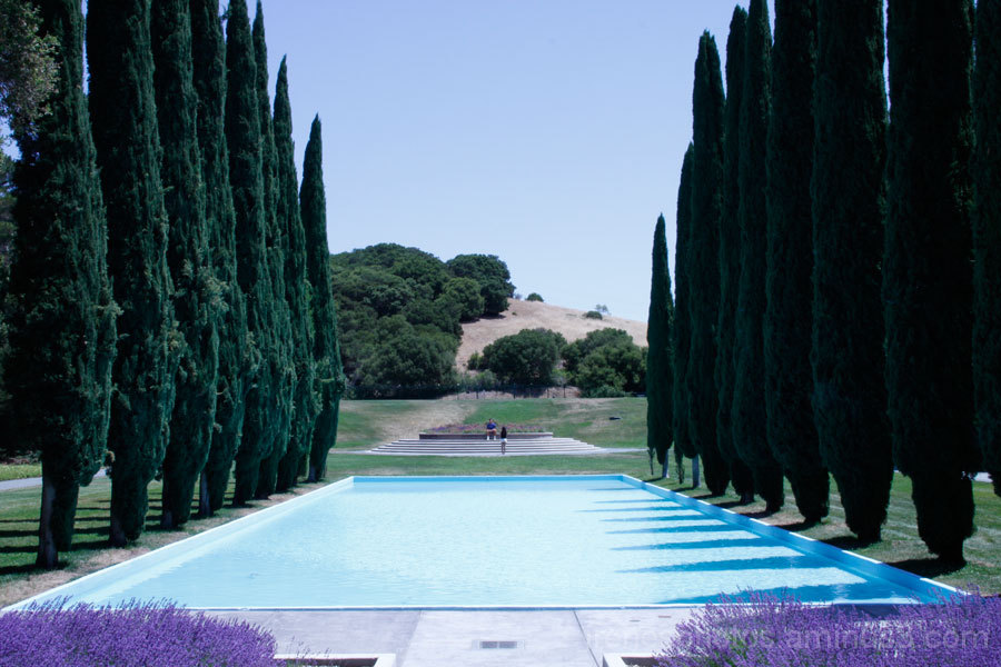 Trip to Pulgas Water Temple 7