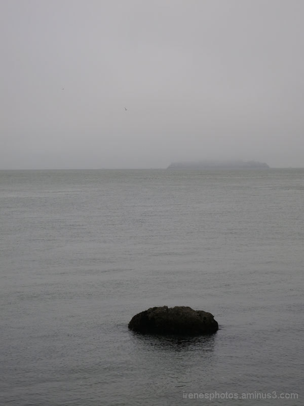 View From Fort Point