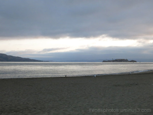 From Crissy Field #4