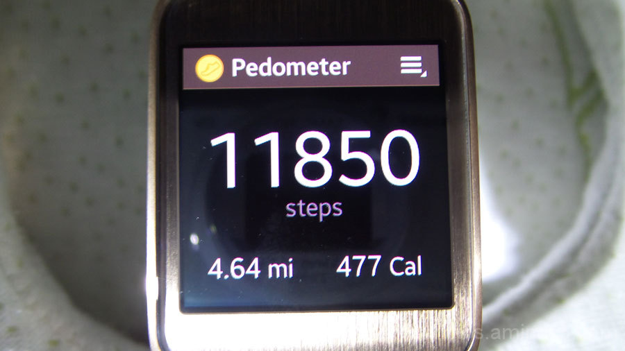 Steps Taken #2