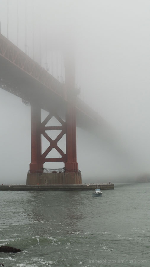 Golden Gate Fogged In