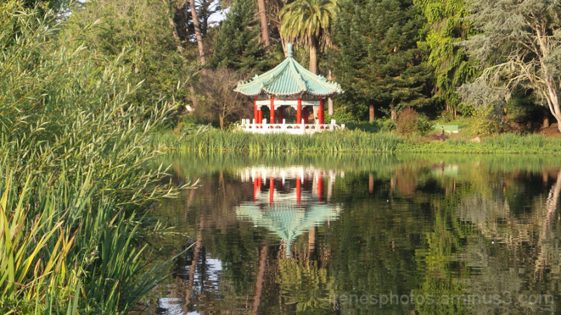 Chinese Pavilion and Reflection