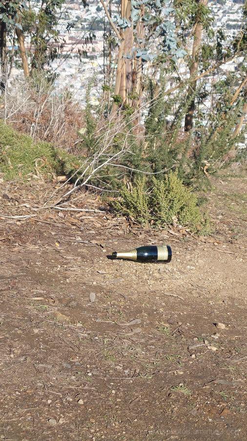 ST - Bottle