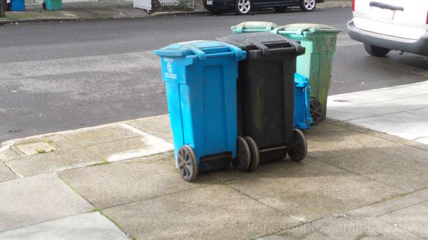 Garbage/Recycle Bins on 1.19.16