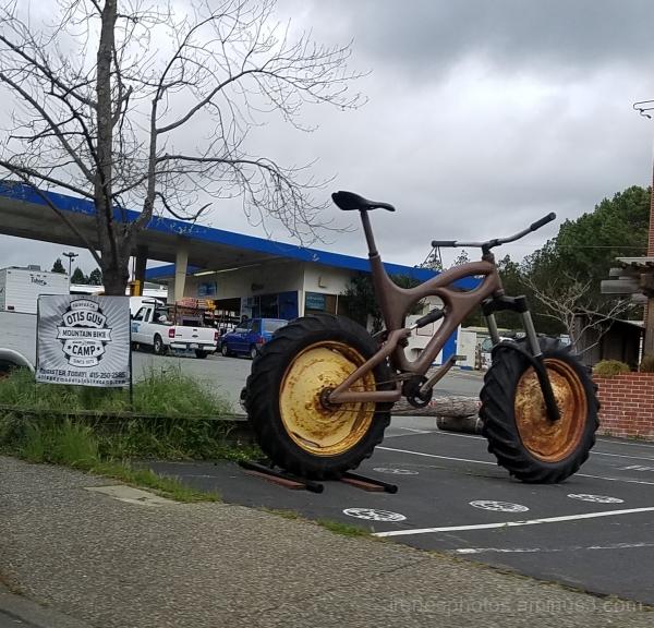 Wanna Bike Ride? - ST