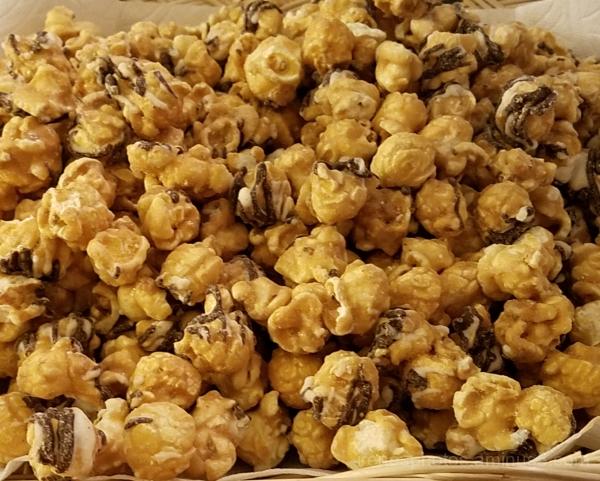 Zebra Popcorn - ST