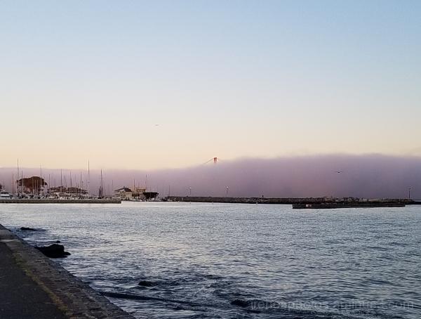 Morning Fog 09.28.2017