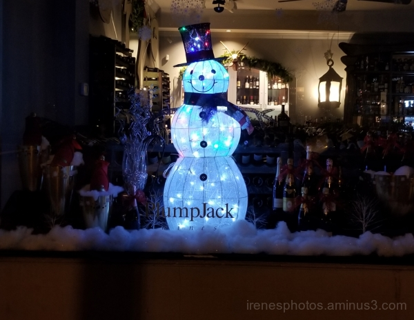 Snowman in Window