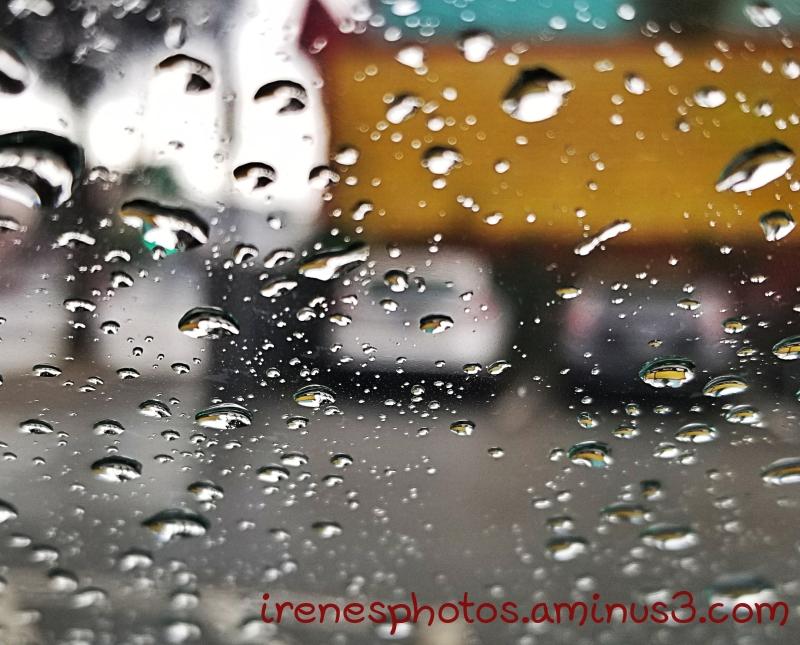More Rain 02.09.2019 #2