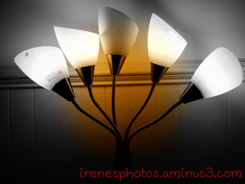 B&W Lights
