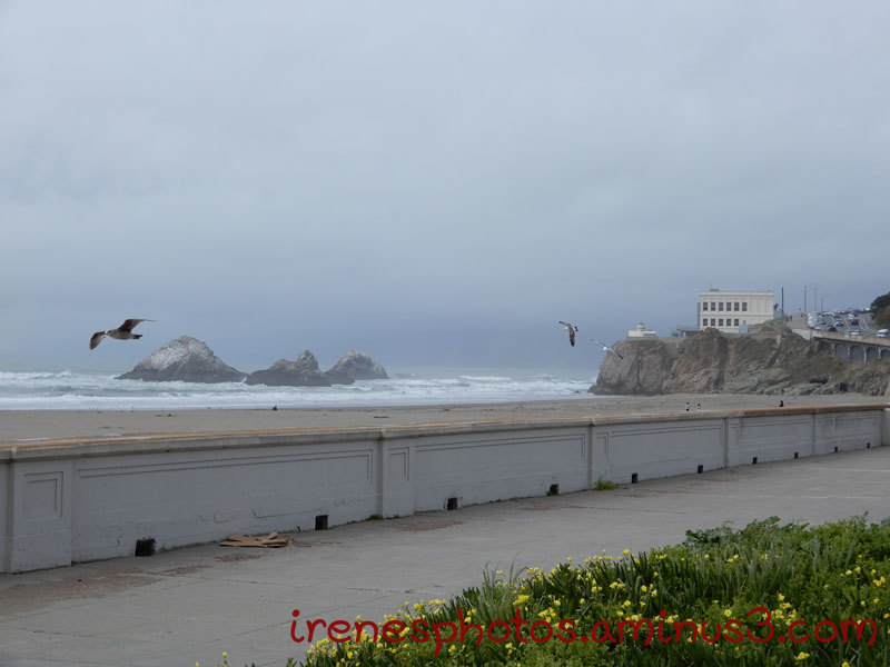 Seal Rock and Cliff House
