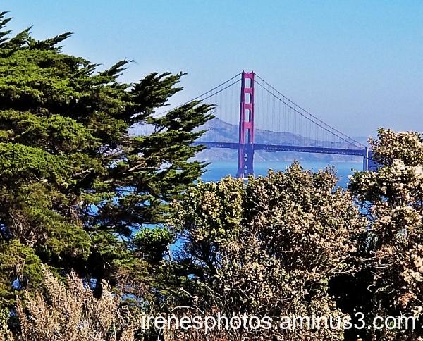Golden Gate Bridge on 11.03.2019