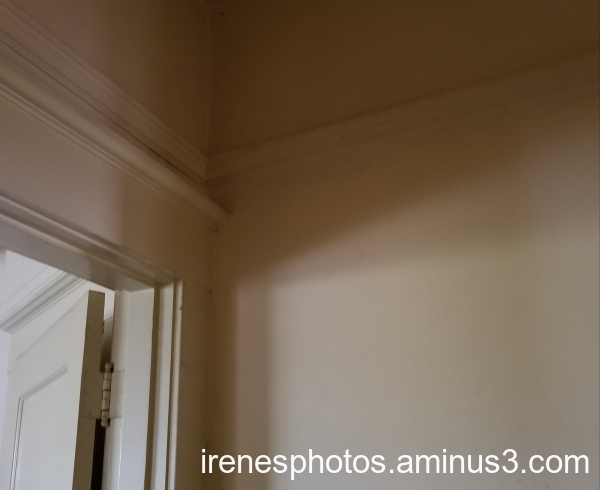 Inside Shadows