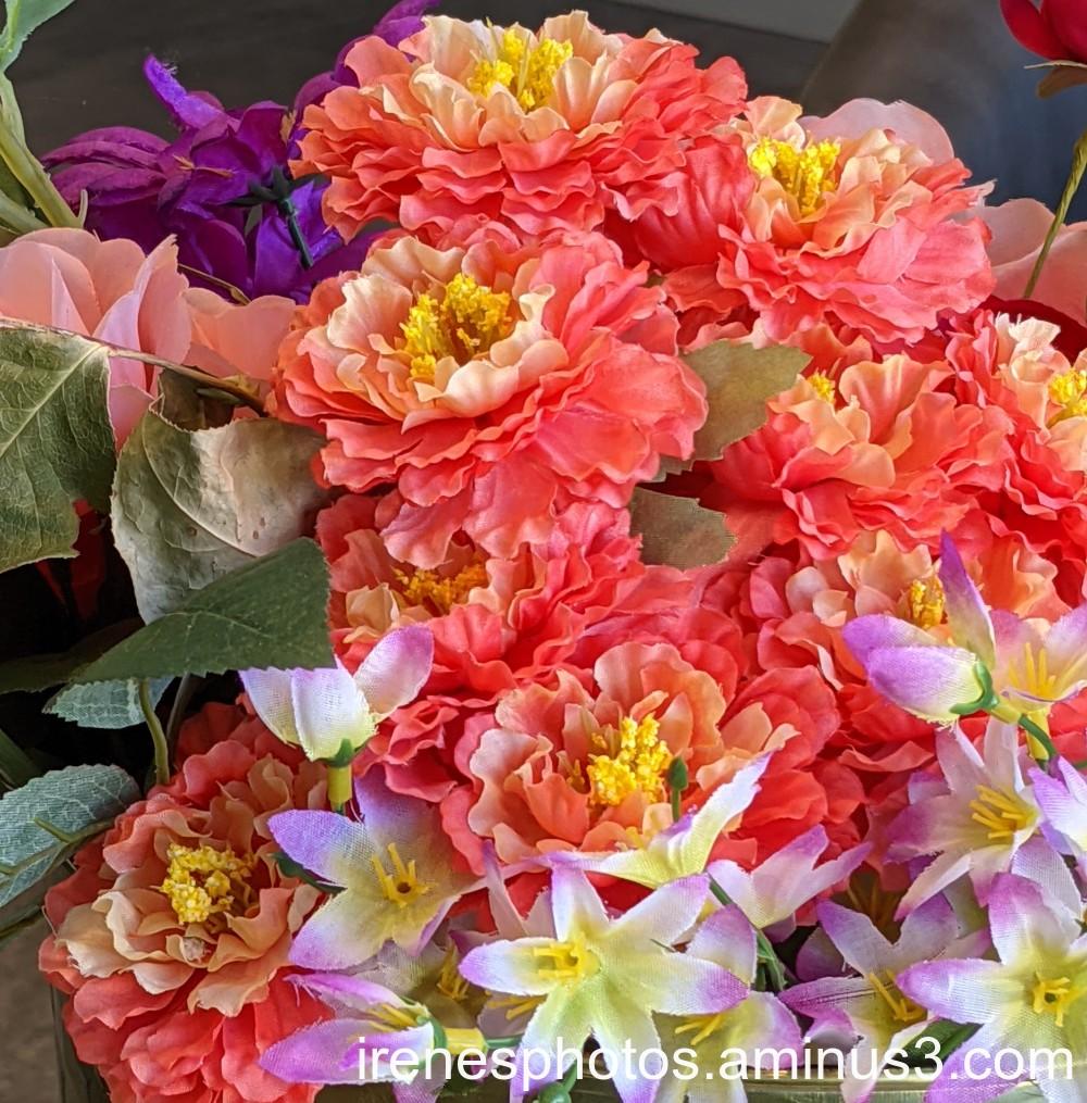 Flowers on 06.24.2021