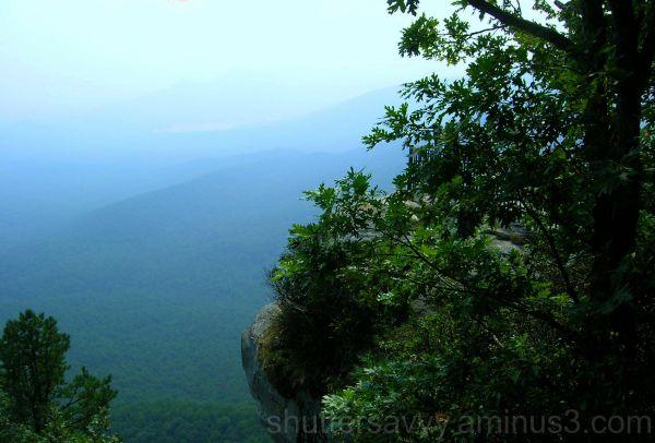 Mountains, Trees