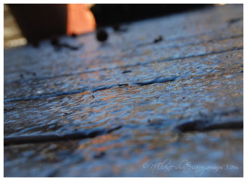 ice on deck