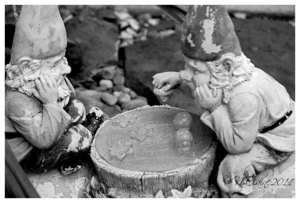 gnomes, statue
