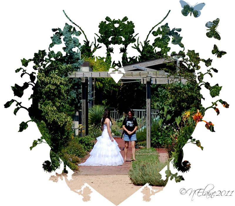bride in garden