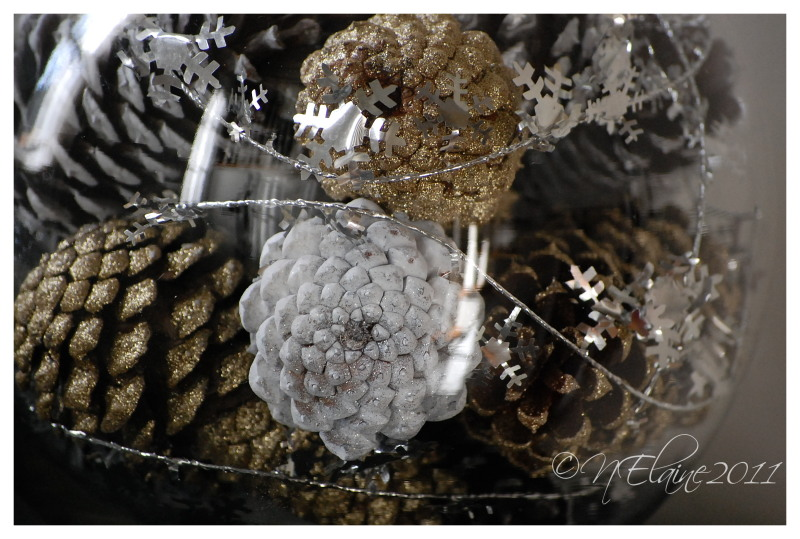 pine cones in jar