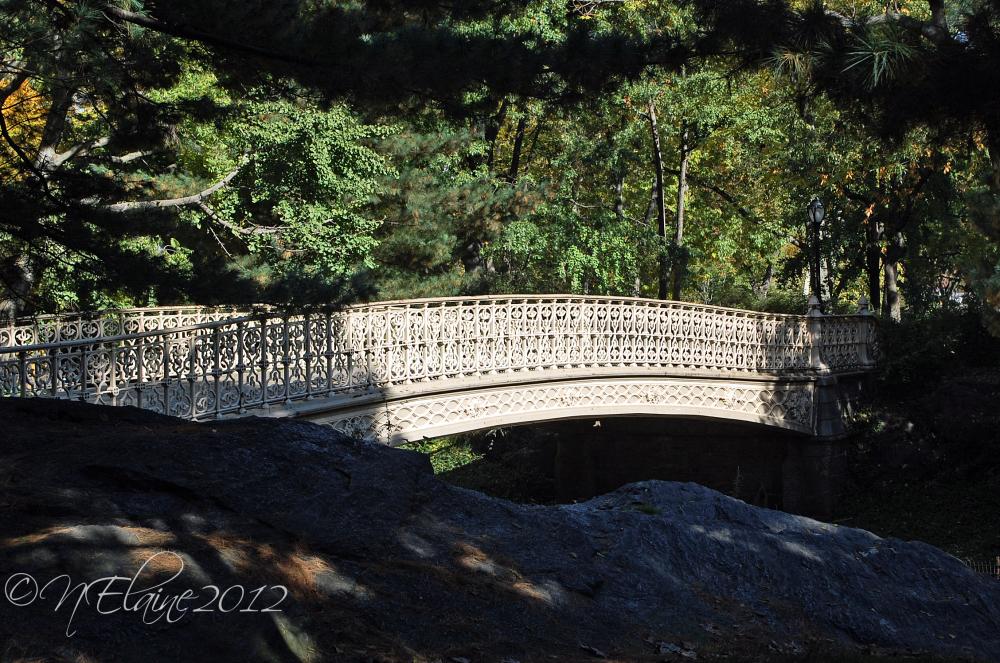 bridge, trees