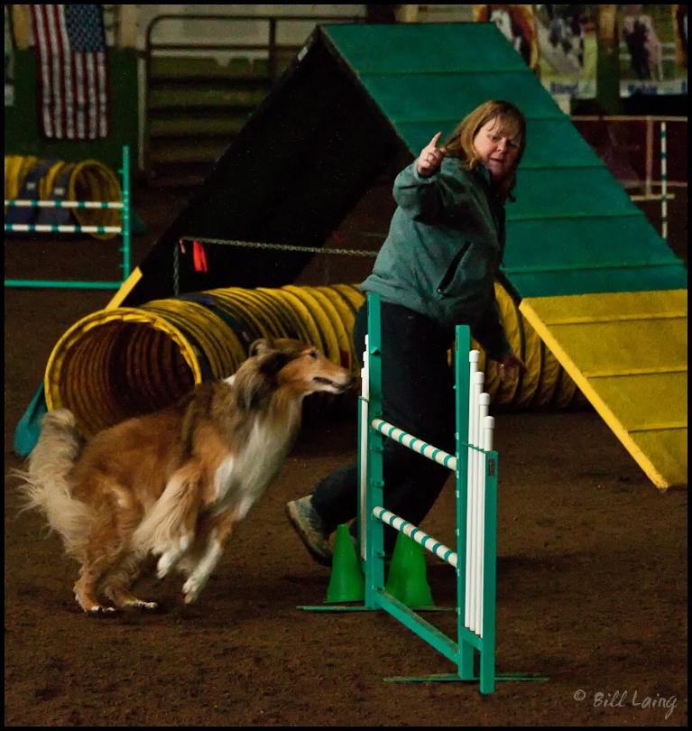 Jump, Lassie!  Jump!!