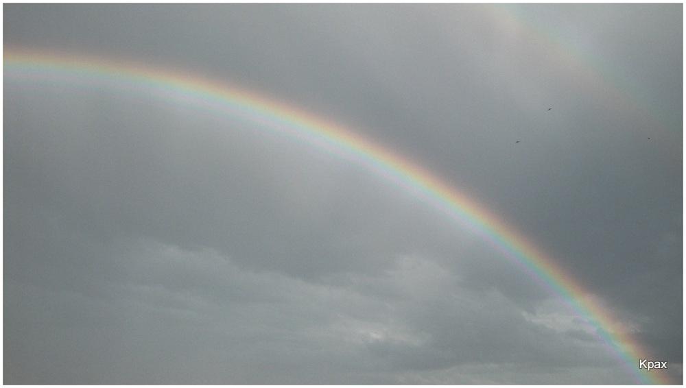 Los guerreos del arco iris
