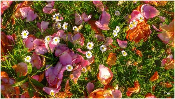 Equinocio de primavera