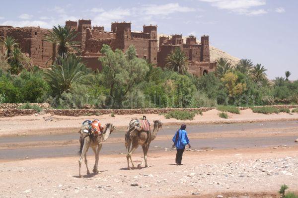 Kasbah en Ait Benhaddou