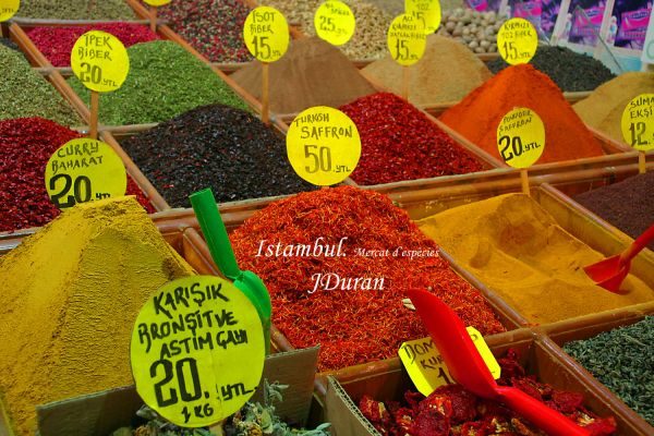 Species in big Istambul market