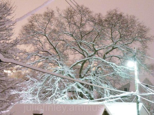 Nighttime snowfall