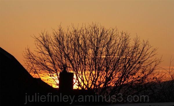 Early sunrise.