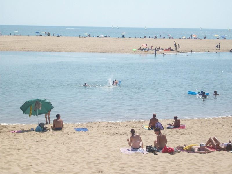 plage de palmyre