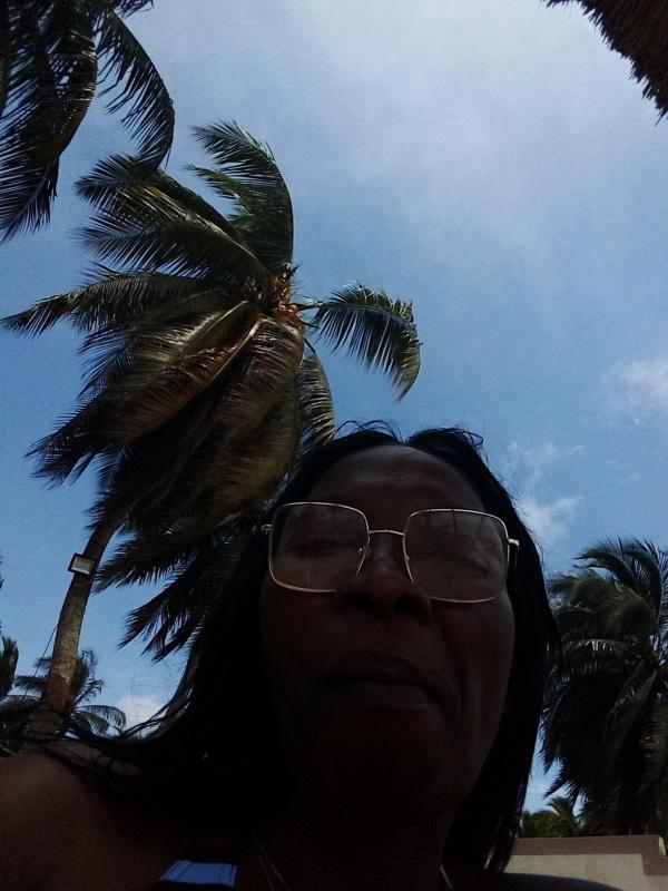 Sous les cocotiers à l'école Boulay, côte d'ivoire