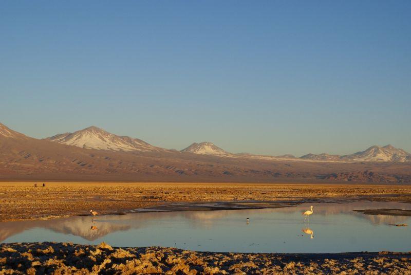 Soleil couchant dans le Salar d'Atacama au Chili