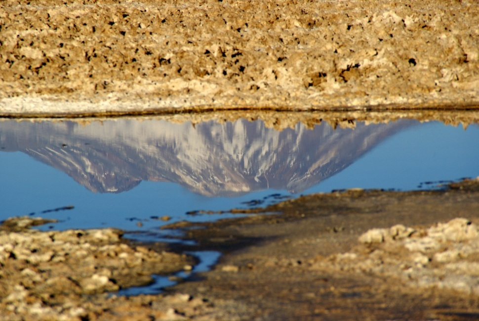 chili, désert d'Atacama, salar d'Atacama