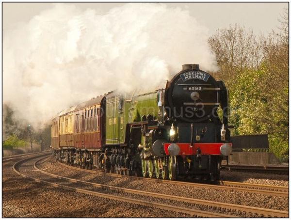 Tornado Steam Train