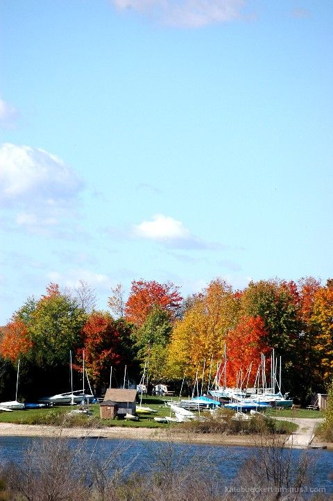 A fall day in October - the boats