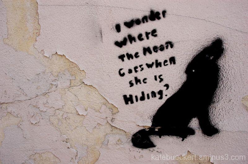Downtown graffiti - Wolf