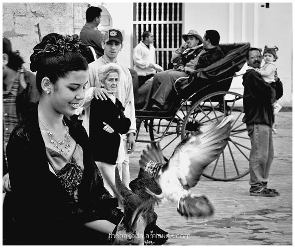 Son cubano re-edition