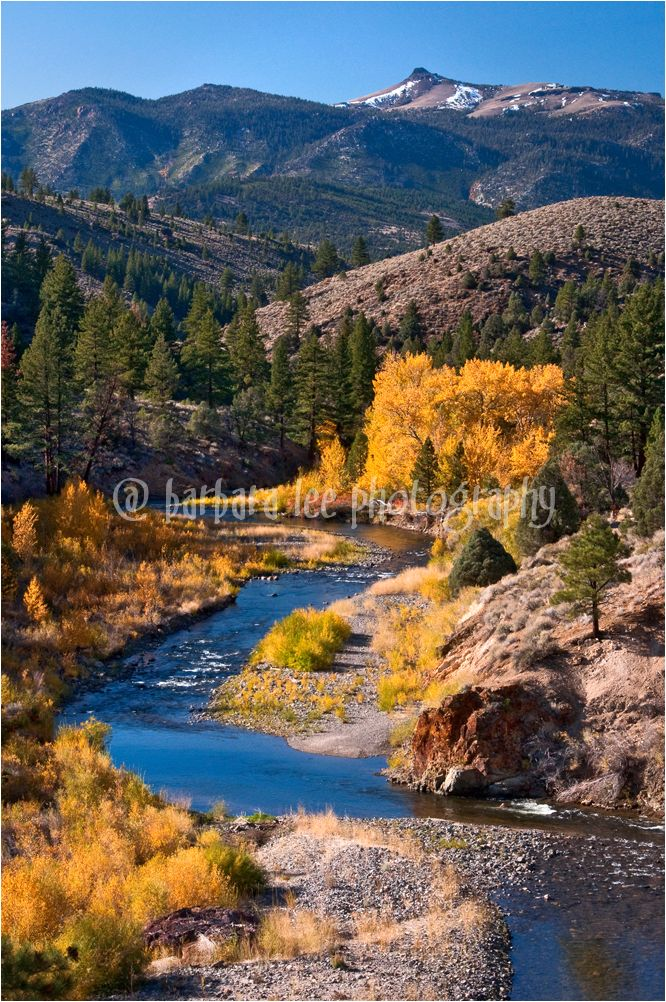 Fall Comes to the Carson River in the Sierras