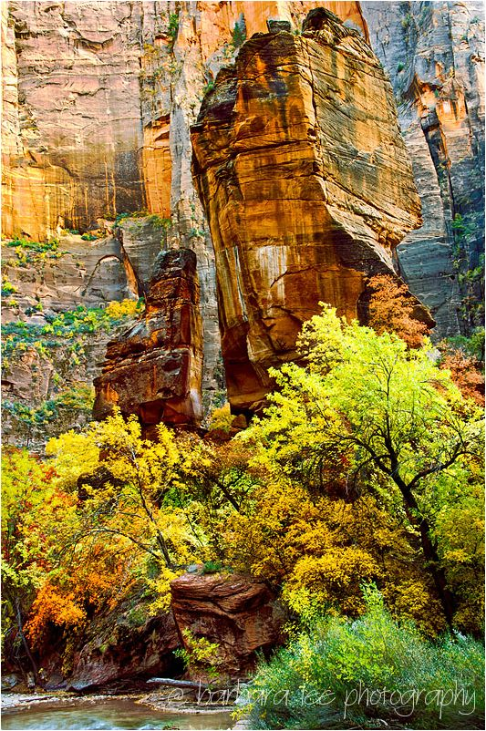 The Temple of Sinawava in Zion National Park