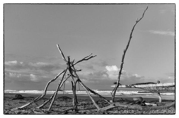 Black and White Beach Sculpture