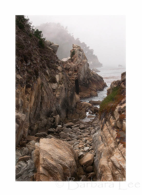 Point Lobos State Reserve, Carmel California