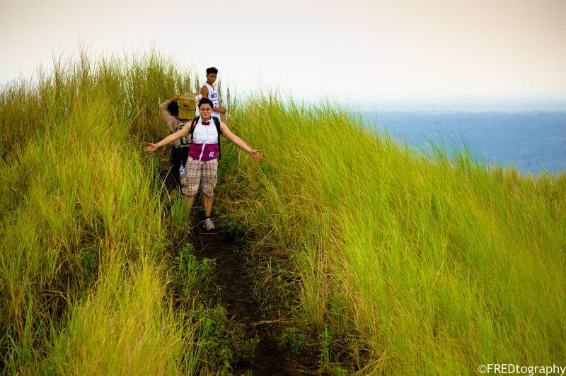 A trekker stands among a sea of grass.