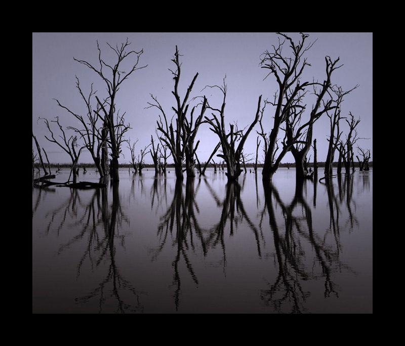 Wachtell's Lagoon II (tint)
