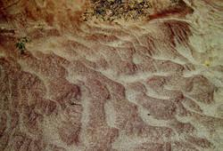 L'essència d'una terra - The essence of a land  9