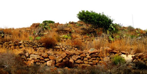 L'essència d'una terra - The essence of a land 17