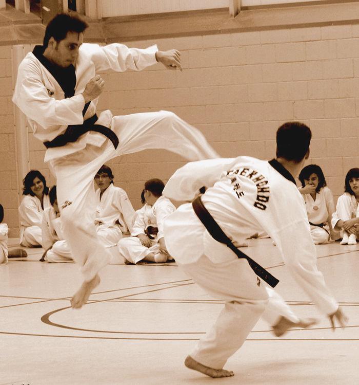 * Exhibició de Taekwondo 3