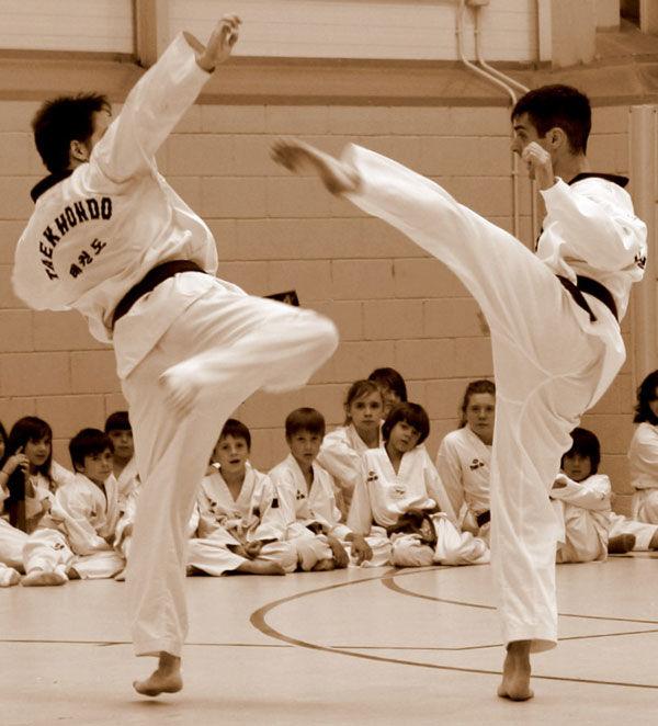 * Exhibició de Taekwondo 2